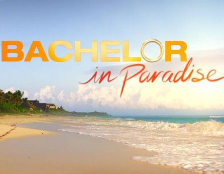 "Bachelor in Paradise Halts Production due to ""Misconduct""."